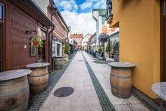 Visualizzazione della via della porta, vecchia città della porta principale in Lituania fotografia stock