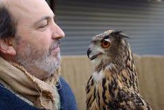 Visualizzazione di caccia col falcone Fotografia Stock