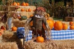 Visualizzazione di Halloween Fotografia Stock Libera da Diritti
