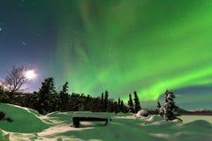 Visualizzazione intensa dei borealis dell'aurora degli indicatori luminosi nordici Immagine Stock Libera da Diritti