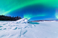 Visualizzazione intensa dei borealis dell'aurora degli indicatori luminosi nordici Fotografie Stock Libere da Diritti