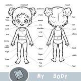 Visueel woordenboek over het menselijke lichaam Mijn lichaamsdelen voor een meisje stock illustratie