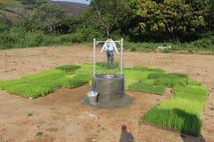 Visuellt padifält för kidis arkivfoto