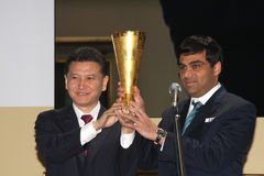 Viswanathan Anand Royalty Free Stock Image