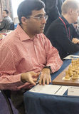 Viswanathan Anand Stock Photo