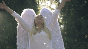 Vit ängel stock video