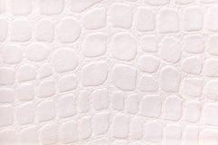 Vit bakgrund från ett mjukt stoppningtextilmaterial, closeup Tyg med modellen som imiterar krokodilhud Fotografering för Bildbyråer