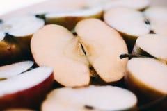Vit bakgrund, ljusa objekt seamless äpplebakgrund Royaltyfri Foto