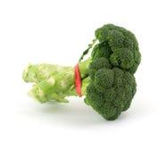 vit bakgrundsbroccoli Fotografering för Bildbyråer