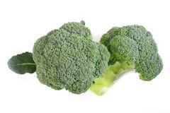 vit bakgrundsbroccoli Royaltyfri Bild