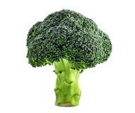 vit bakgrundsbroccoli Arkivbilder