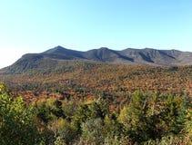 Vit bergnationalpark Arkivfoto