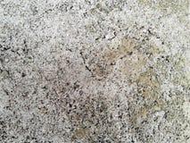 Vit betongväggtextur Textur för abstrakt konst färgrikt Royaltyfria Bilder
