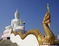 Vit bild av Buddha Royaltyfri Bild