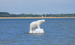 Vit björn på havet Royaltyfria Foton