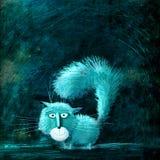Vit blå katt på svart bakgrund Arkivfoton