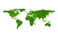 vit bladtextur för världskarta på vit bakgrund Arkivfoto