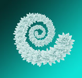 Vit blom- spiral Arkivfoton