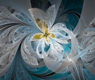 Vit blomma för abstrakt bild Royaltyfri Foto