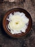 Vit blomma i brun bunke med vatten Royaltyfri Fotografi