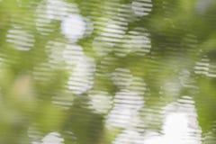 Vit bokeh på grön bakgrund Royaltyfri Foto