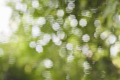 Vit bokeh på grön bakgrund Royaltyfri Bild