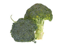vit broccoli Royaltyfria Bilder