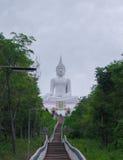 Vit Buddha Royaltyfri Fotografi