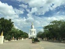 Vit Buddha Royaltyfri Foto