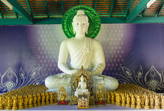 Vit Buddhastaty Royaltyfri Fotografi