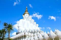 Vit Buddhastaty på den Phasornkaew templet Arkivbilder
