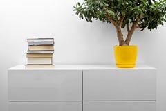 Vit byrå med bunten av böcker och blomkrukan i ljus minimalisminre Royaltyfria Bilder