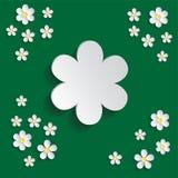 Vit chamomile Modellinpackningspapper, textilmall Grön bakgrund stock illustrationer