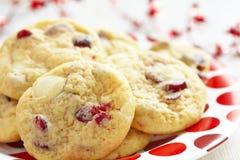 Vit choklad Chip Cranberry Cookies Royaltyfria Foton