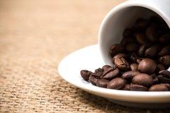 Vit coffeecup och platta med spillda coffeebeans Arkivbild
