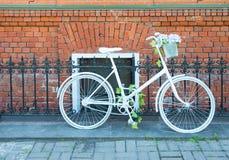 Vit cykel Arkivbild