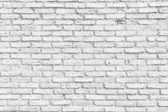 Vit design för baner för textur för tegelstenvägg Töm abstrakt bakgrund för presentationer och rengöringsdukdesign Mycket utrymme Royaltyfria Foton