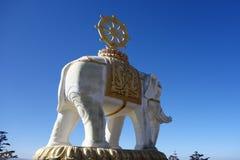 vit elefant på MT Emei Arkivbild