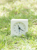 Vit enkel klocka på gräsmattagården, 11:20 elva tjugo Arkivbild