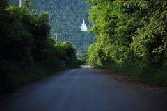 Vit färg för stor Buddha Royaltyfri Foto