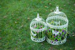 Vit fågelbur för att gifta sig garnering arkivfoton