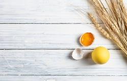 Vit för bästa sikt och bruna ägg på vitt trä royaltyfri bild