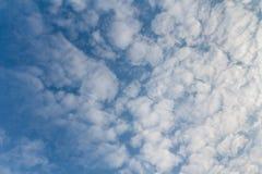 Vit fördunklar med blåttskyen Royaltyfri Foto
