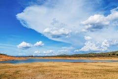 Vit fördunklar med blåttskyen Arkivbilder