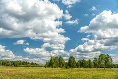 Vit fördunklar på blå himmel över grön skog Arkivbilder