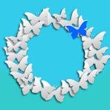 Vit fjärilspapper för cirkel och blåttfjäril på blå pastellfärgad bakgrund arkivfoton