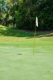 Vit flagga i grönt gräs för golfbana Arkivbild