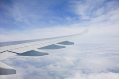 Vit flyg- vinge Royaltyfri Bild
