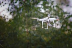 Vit flygaquadrocopter med kameran på grön skogbakgrund fotografering för bildbyråer