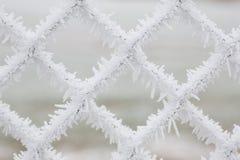 vit fryste snöflingor royaltyfri bild